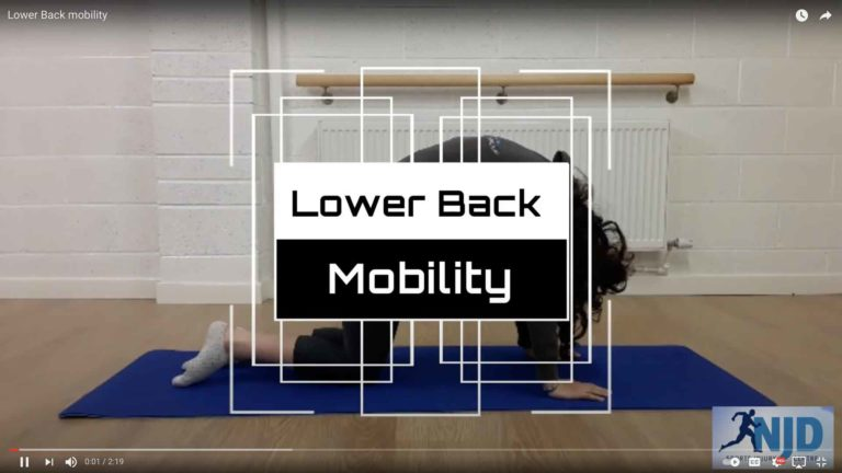 Lower Back Mobility